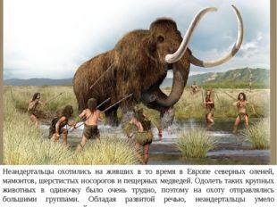 Неандертальцы охотились на живших в то время в Европе северных оленей, мамонт