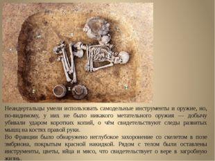 Неандертальцы умели использовать самодельные инструменты и оружие, но, по-вид