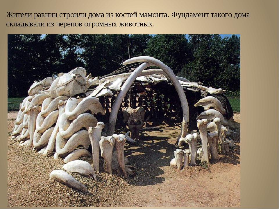 Жители равнин строили дома из костей мамонта. Фундамент такого дома складывал...