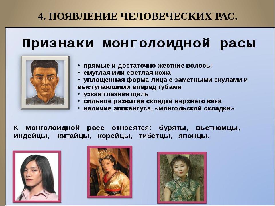 4. ПОЯВЛЕНИЕ ЧЕЛОВЕЧЕСКИХ РАС.