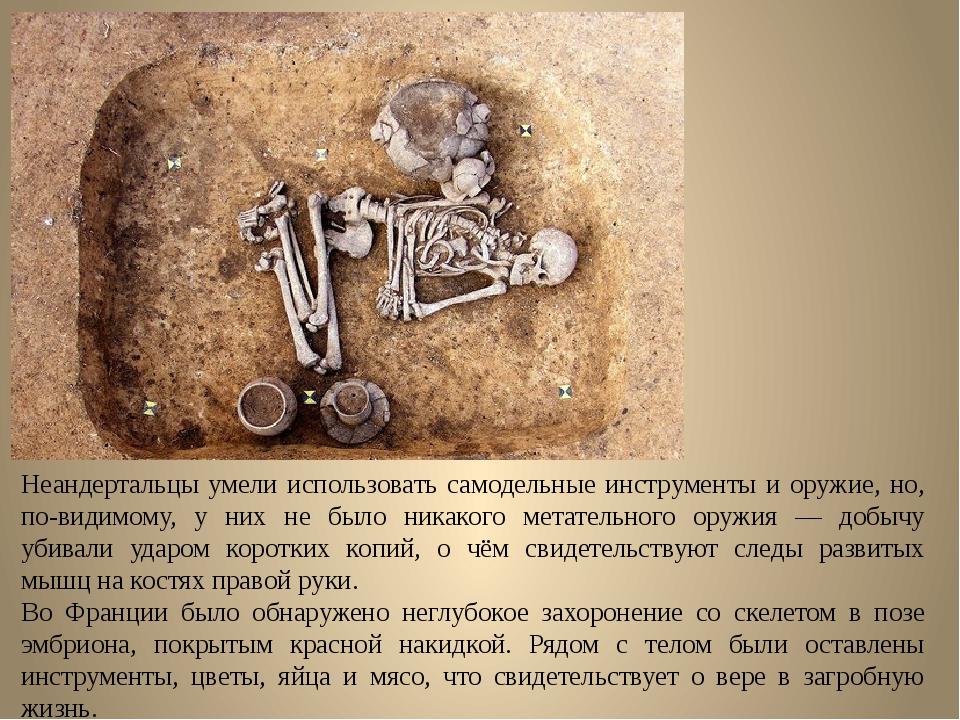 Неандертальцы умели использовать самодельные инструменты и оружие, но, по-вид...