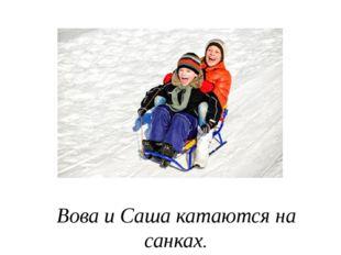 Вова и Саша катаются на санках.