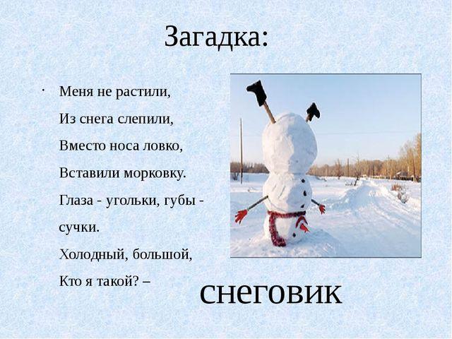 Загадка: Меня не растили, Из снега слепили, Вместо носа ловко, Вставили морко...