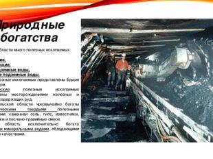 Природные богатства В Тульской области много полезных ископаемых: горючие, ме