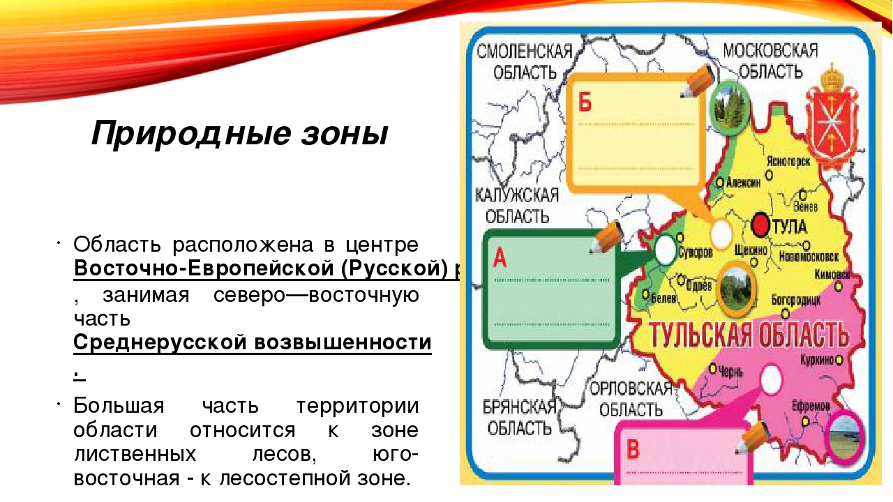 Природные зоны Область расположена в центре Восточно-Европейской (Русской) ра...