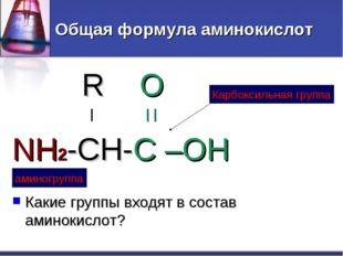 Общая формула аминокислот R O | | | NH2-CH-C –OH Какие группы входят в состав