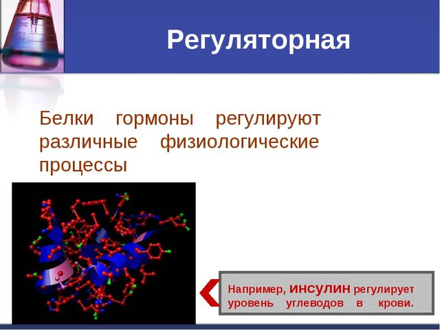 Регуляторная Белки гормоны регулируют различные физиологические процессы Напр...