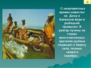 С незапамятных времен известен на Дону и Азовском море и рыбацкий промысел. В