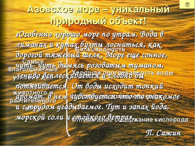 Азовское море – уникальный природный объект! Мелководность Хорошая прогреваем...