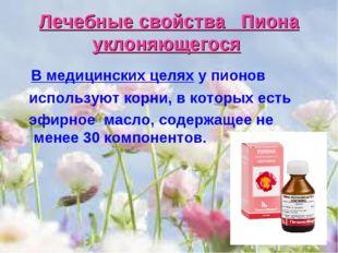 Лечебные свойства Пиона уклоняющегося В медицинских целях у пионов используют