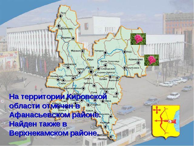На территории Кировской области отмечен в Афанасьевском районе. Найден также...