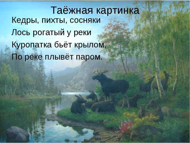 Таёжная картинка Кедры, пихты, сосняки Лось рогатый у реки Куропатка бьёт кры...