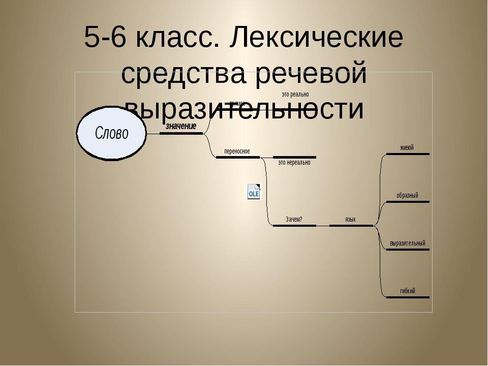 5-6 класс. Лексические средства речевой выразительности