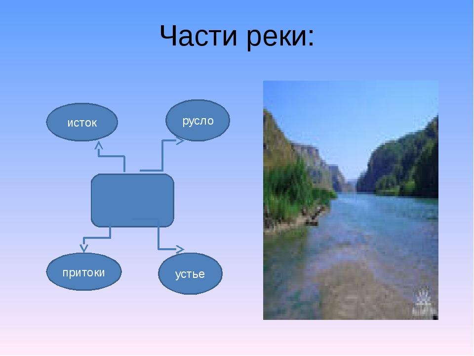 Части реки: исток русло притоки устье