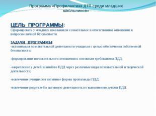 Программа «Профилактика ДТП среди младших школьников» ЦЕЛЬ ПРОГРАММЫ: Сформир