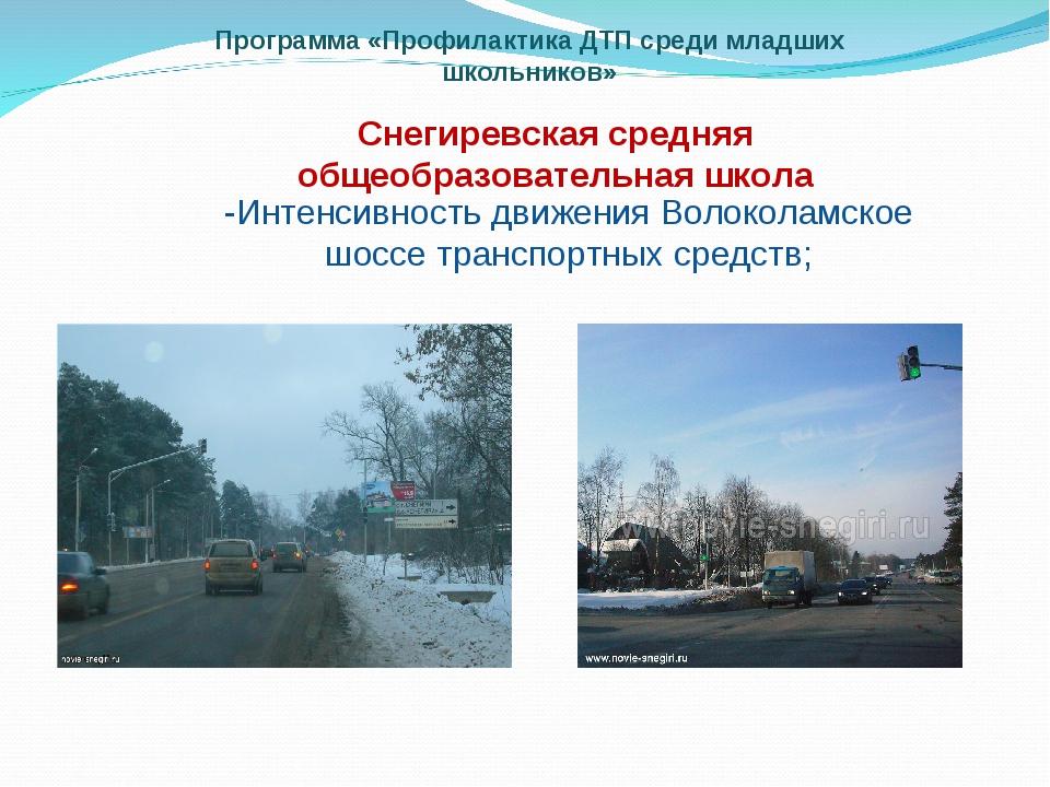 Программа «Профилактика ДТП среди младших школьников» Снегиревская средняя об...