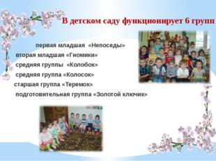 В детском саду функционирует 6 групп первая младшая «Непоседы» вторая младшая