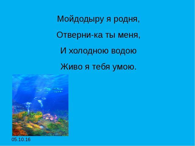 Мойдодыру я родня, Мойдодыру я родня, Отверни-ка ты меня, И холодною водою...