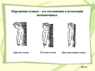 Нарушение осанки – это отклонения в положении позвоночника. Круглая спина Кру