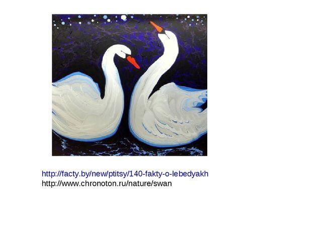 http://facty.by/new/ptitsy/140-fakty-o-lebedyakh http://www.chronoton.ru/natu...