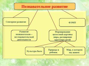 Познавательное развитие Сенсорное развитие ФЭМП Развитие познавательно – иссл
