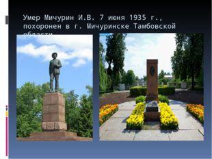 Умер Мичурин И.В. 7 июня 1935 г., похоронен в г. Мичуринске Тамбовской области.