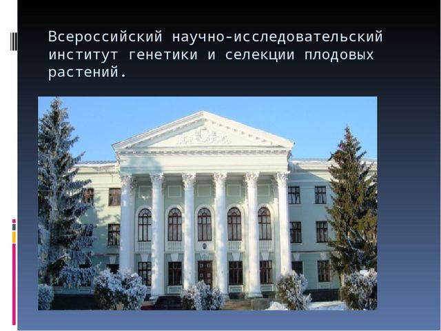 Всероссийский научно-исследовательский институт генетики и селекции плодовых...