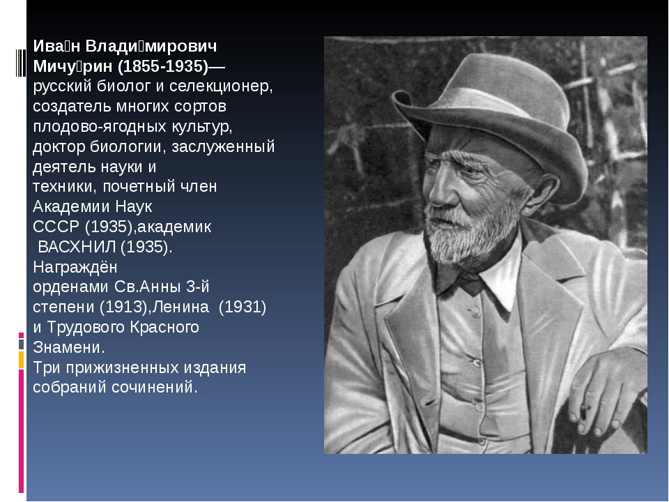 Ива́н Влади́мирович Мичу́рин (1855-1935)— русский биолог и селекционер, созда...