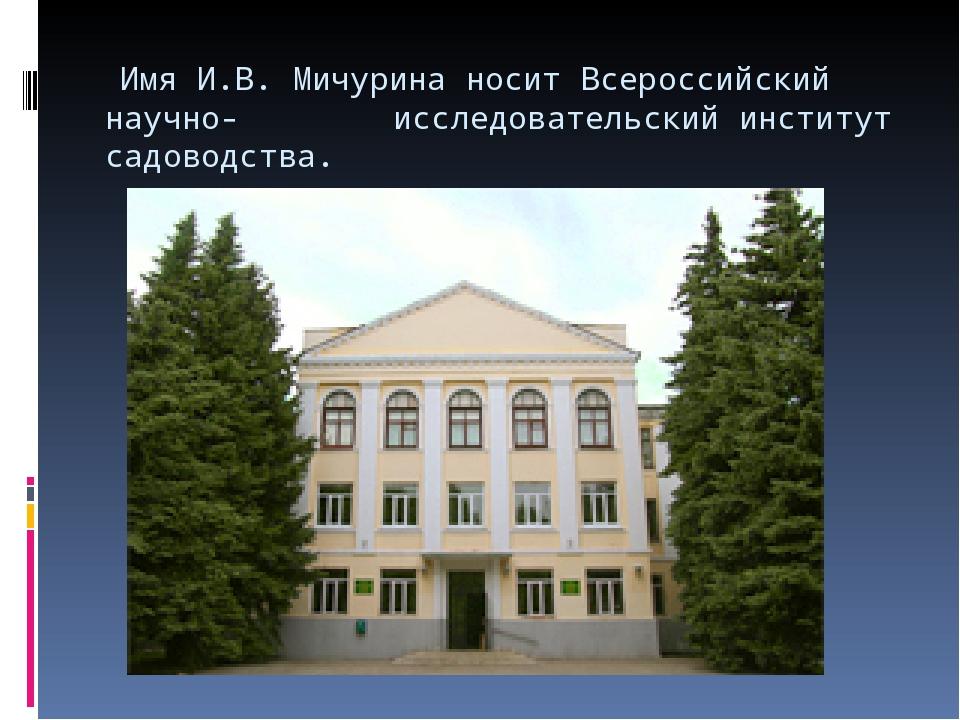 Имя И.В. Мичурина носит Всероссийский научно- исследовательский институт сад...