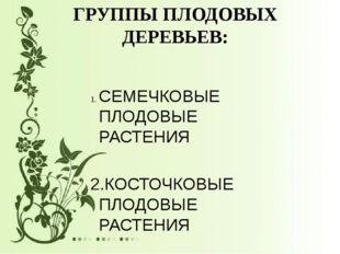 ГРУППЫ ПЛОДОВЫХ ДЕРЕВЬЕВ: СЕМЕЧКОВЫЕ ПЛОДОВЫЕ РАСТЕНИЯ 2.КОСТОЧКОВЫЕ ПЛОДОВЫ