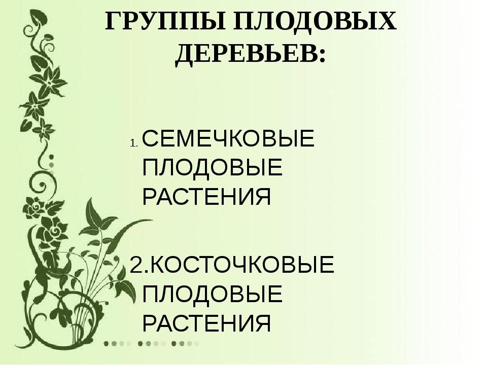 ГРУППЫ ПЛОДОВЫХ ДЕРЕВЬЕВ: СЕМЕЧКОВЫЕ ПЛОДОВЫЕ РАСТЕНИЯ 2.КОСТОЧКОВЫЕ ПЛОДОВЫ...