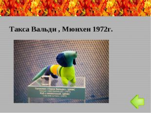 11-ые паралимпийские игры в Сочи