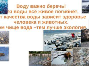 Воду важно беречь! Без воды все живое погибнет. От качества воды зависит здо