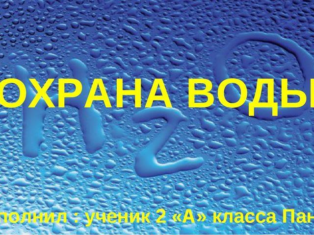 ОХРАНА ВОДЫ выполнил : ученик 2 «А» класса Паничев Дима