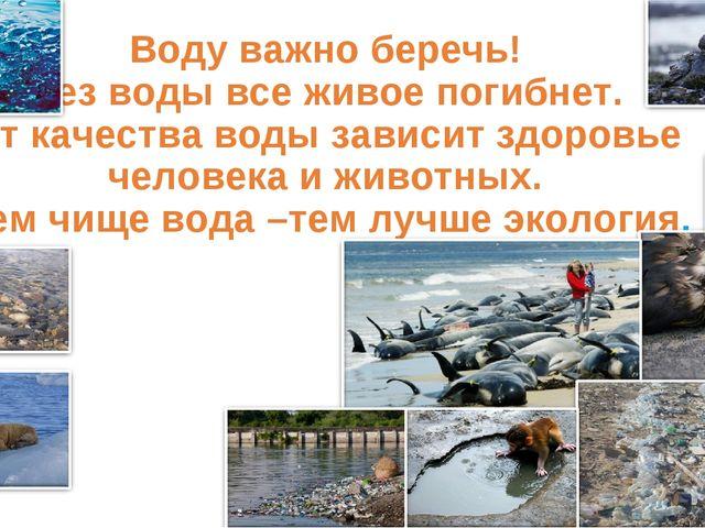 Воду важно беречь! Без воды все живое погибнет. От качества воды зависит здо...