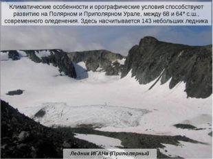 На крайнем севере от предгорных равнин до горных вершин распространены тундры