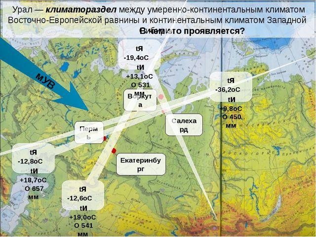 Самые низкие зимние температуры наблюдаются в северо-восточной части Урала, у...