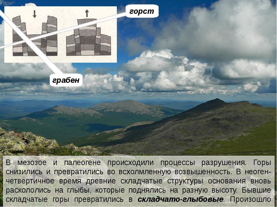 Современные хребты Урала преимущественно невысокие. На севере и на юге они по...