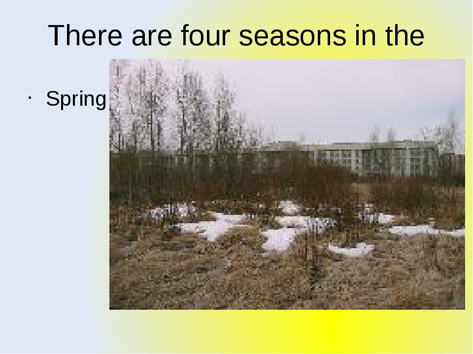 There are four seasons in the year, they are: Spring