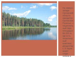 На северо-западе Орловской области находится Орловское Полесье — национальны