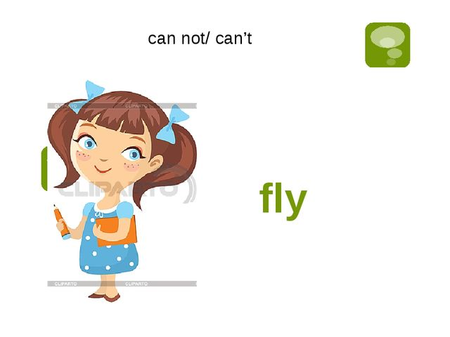 fly can not/ can't