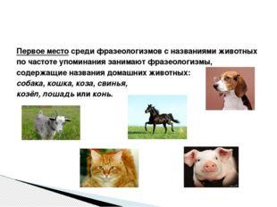 Первое место среди фразеологизмов с названиями животных по частоте упоминания