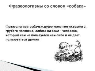 Фразеологизм собачья душа означает скверного, грубого человека, собака на с