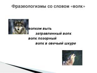 волком выть затравленный волк волк позорный волк в овечьей шкуре Фразеологиз
