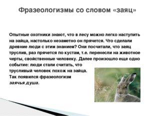 Опытные охотники знают, что в лесу можно легко наступить на зайца, настолько