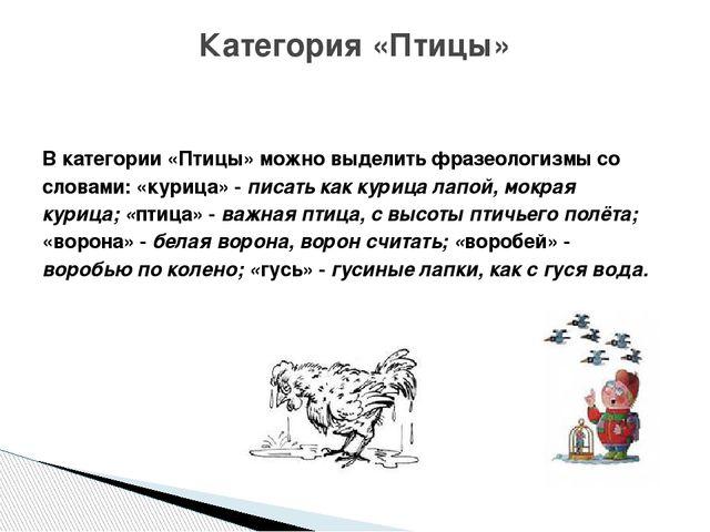 В категории «Птицы» можно выделить фразеологизмы со словами: «курица» - писа...