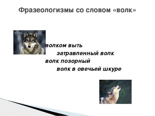 волком выть затравленный волк волк позорный волк в овечьей шкуре Фразеологиз...