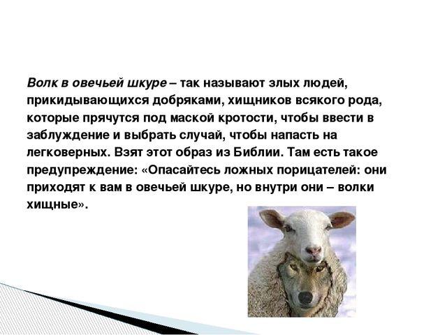 Волк в овечьей шкуре–так называют злых людей, прикидывающихся добряками, хи...