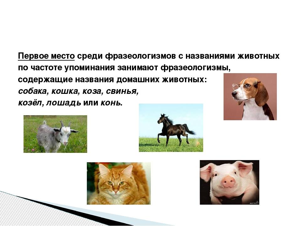 Первое место среди фразеологизмов с названиями животных по частоте упоминания...