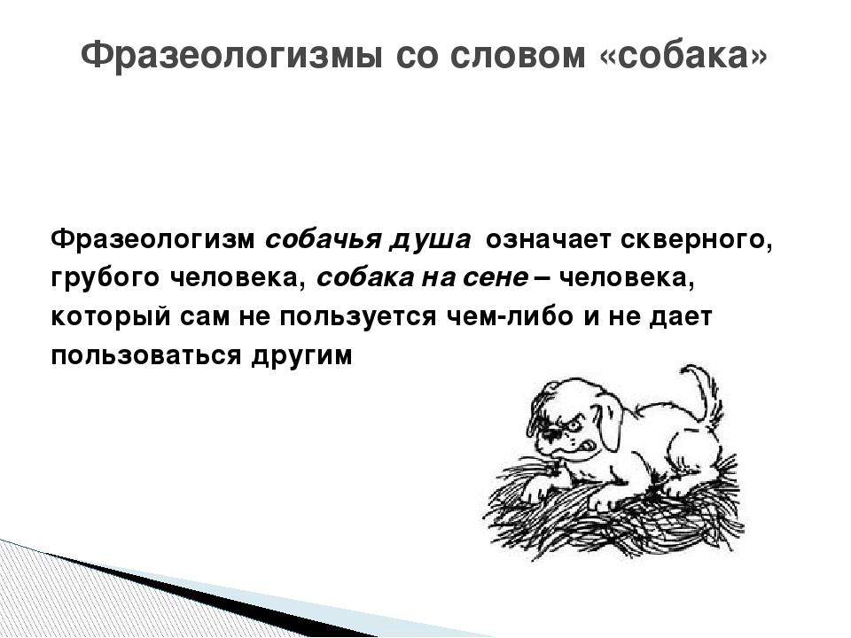 Фразеологизм собачья душа означает скверного, грубого человека, собака на с...